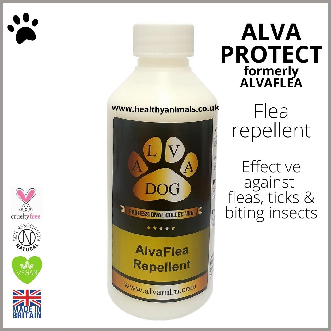 ALVA PROTECT for Dogs