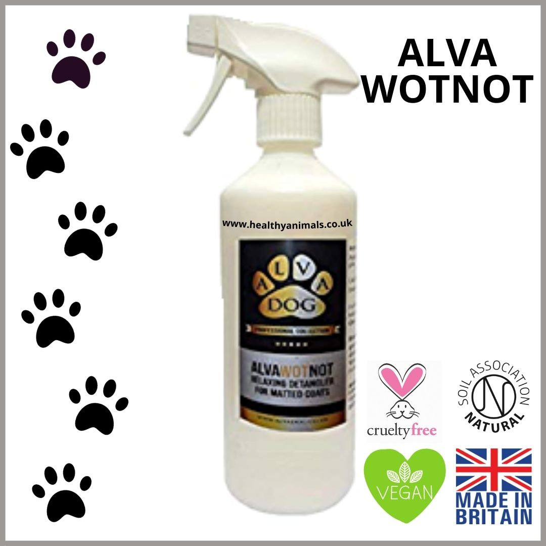 ALVA WOTNOT for Dogs