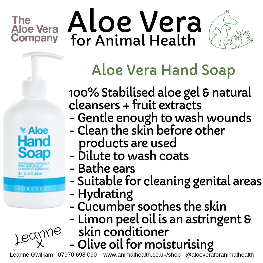 aloe_hand_soap_wash_wound_gentle_clean_debride.png
