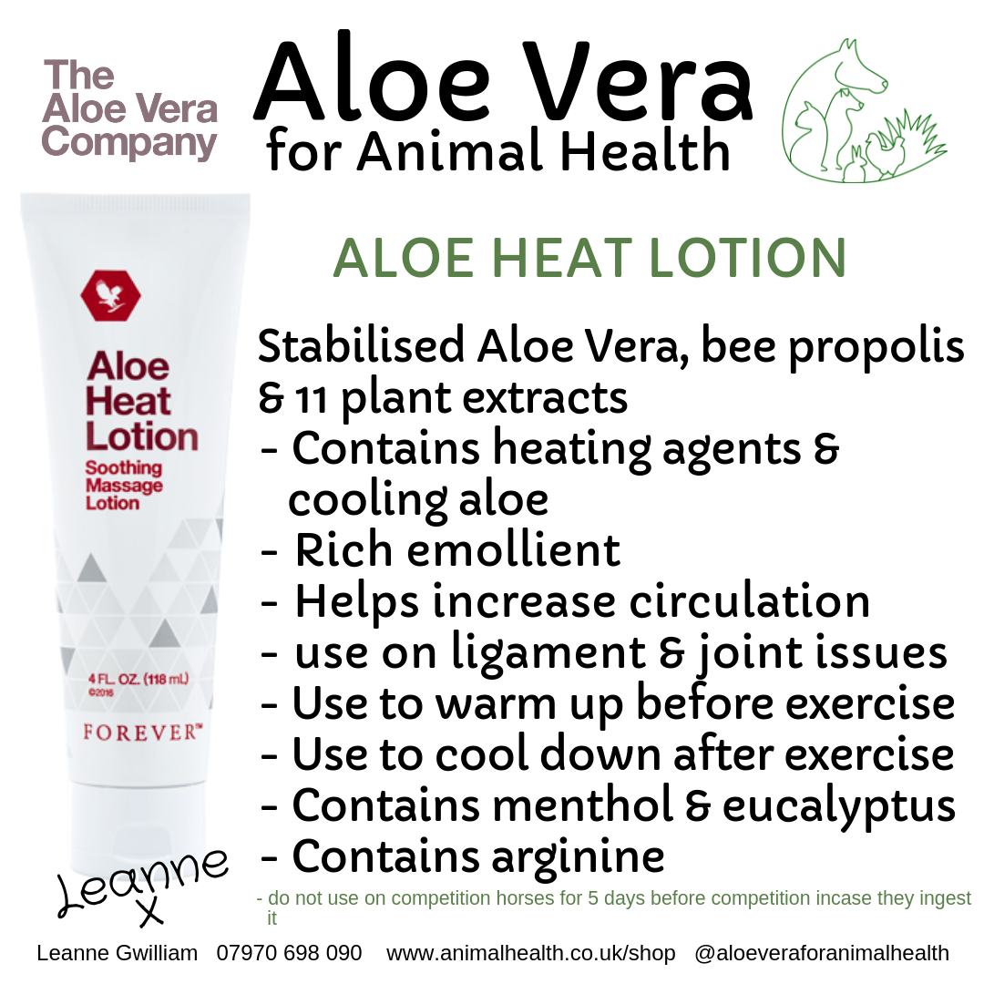 aloe_heat_lotion_muscle_pain_repair_massage.png