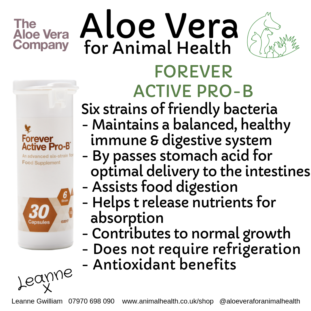 aloe_probiotics_health_wellness_animals.png