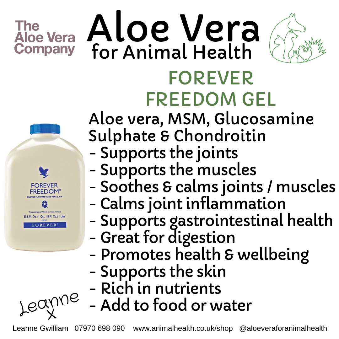 aloe_vera_chondroitin_msm_glucosamine_joint_muscle_support_animals.png