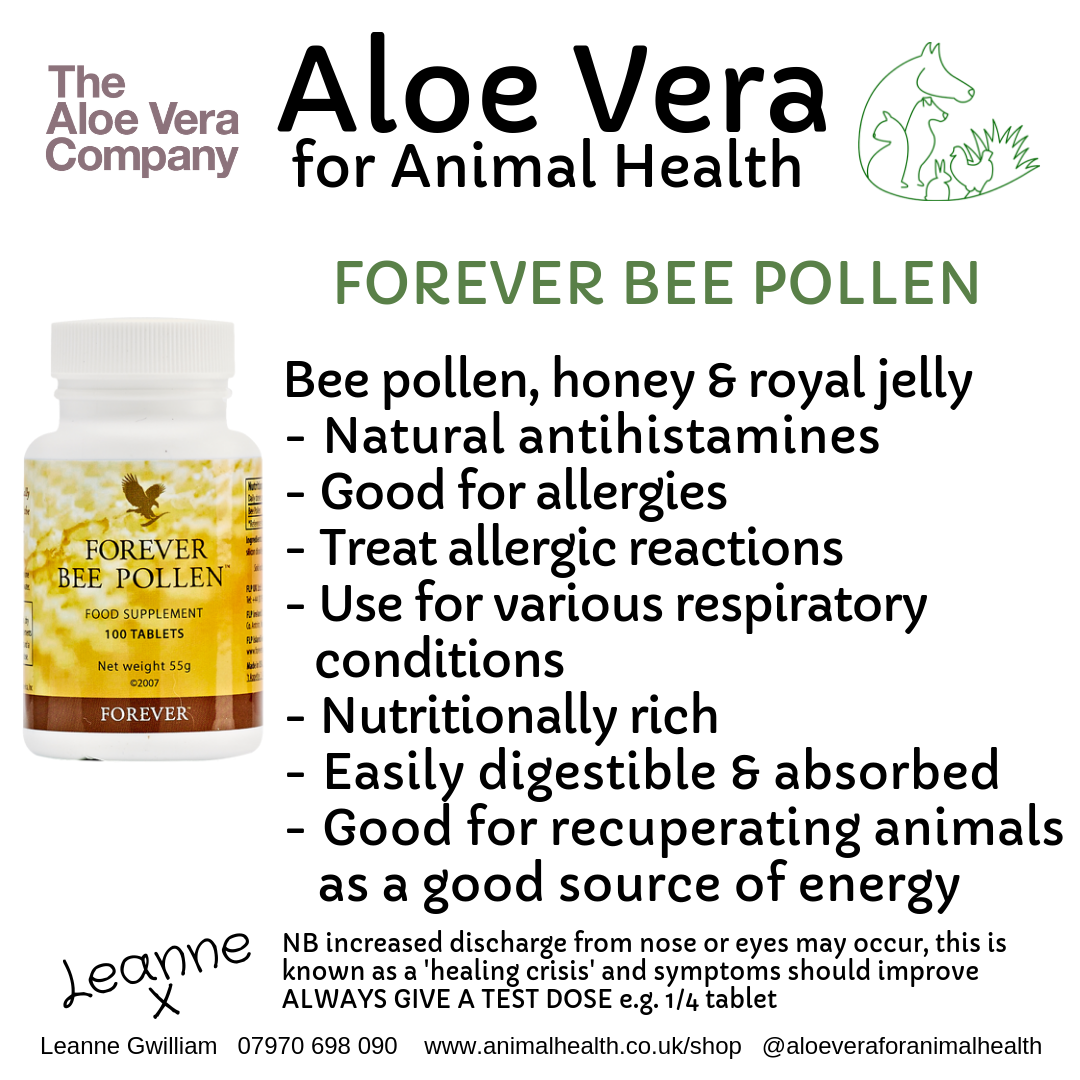 bee_pollen_health_wellness_animal.png